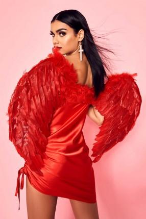 Большие красные крылья ангела CC038